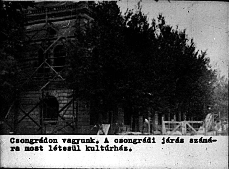 dia80-1954